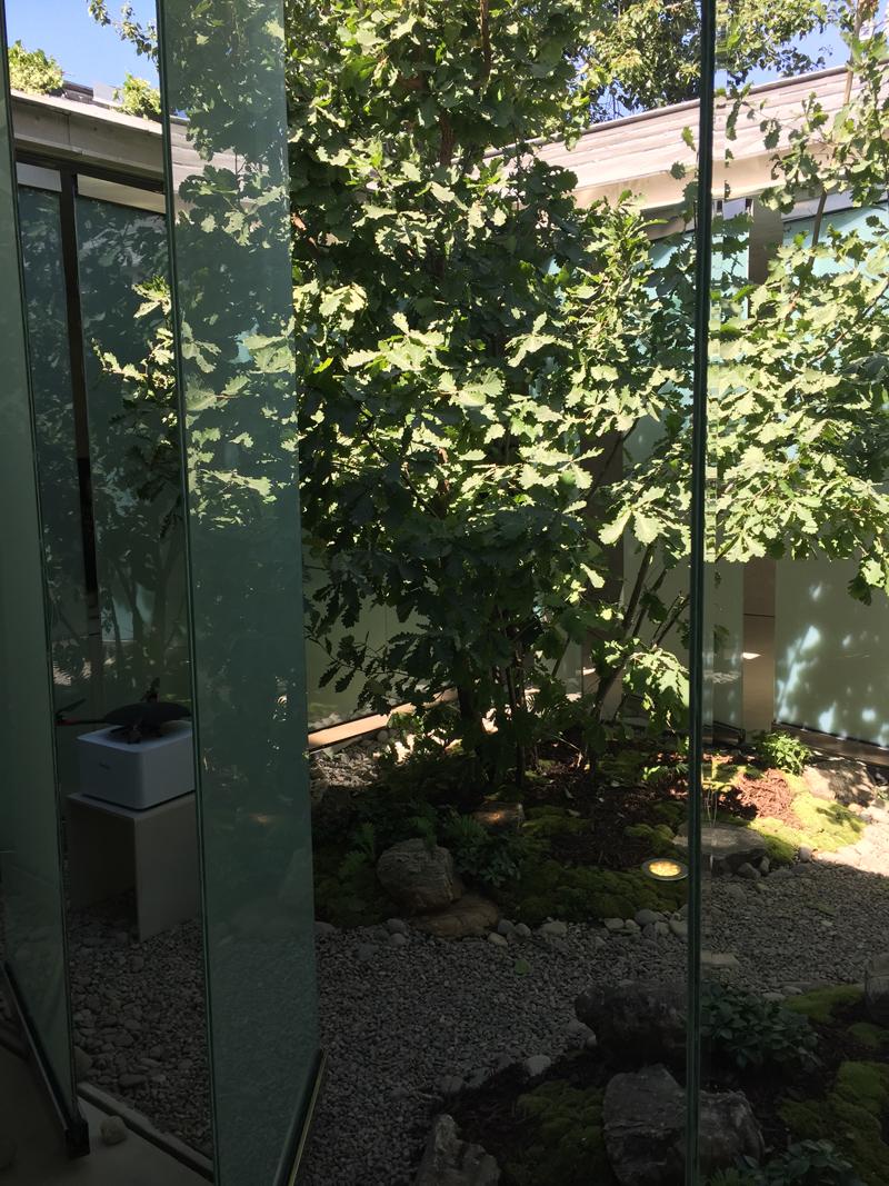 建筑内庭院